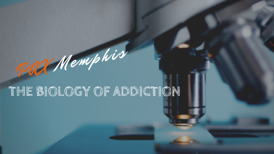 The Biology of Addiction