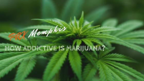 how addictive is marijuana smoking